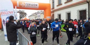 Festiwal w Rzeszowie