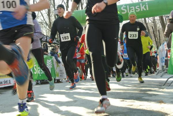 Parkowe Hercklekoty w Chorzowie (14.2.2015)
