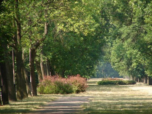 Park im. Józefa Piłsudskiego (Na Zdrowiu) w Łodzi