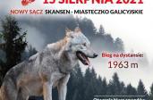Bieg Tropem Wilczym w Nowym Sączu już 15 sierpnia w Miasteczku Galicyjskim